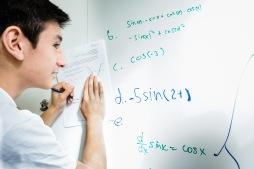 Solving Math Problems at Bay
