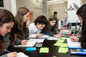 Collaborative Bay Students